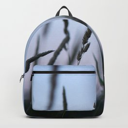 Summer Evenings Backpack