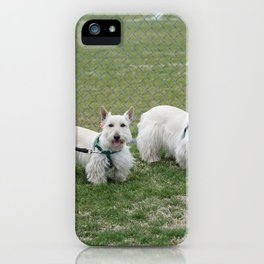 Dog by Jeffrey F Lin iPhone Case
