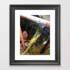 Richard Gecko Framed Art Print
