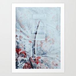 00300103 Art Print