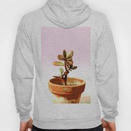 Little succulent money plant in pot Hoody