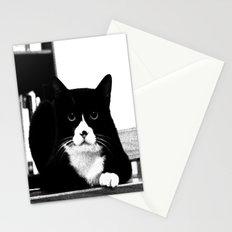 Black Cat Stationery Cards