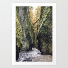 Fall in Oneota Gorge, OR Art Print