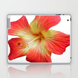 Gorgeous Red And Gold Hawaiian Hibiscus Flower No Text Laptop & iPad Skin