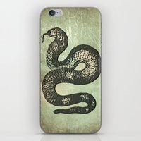 snake iPhone & iPod Skins featuring Snake by LoRo  Art & Pictures