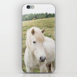 Icelandic Horse in Field iPhone Skin
