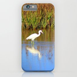 Snowy Egret With Intense Stare iPhone Case