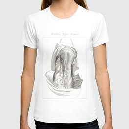 Human Anatomy Art Print MUSCLE SPLENIUS CAPITIS Vintage Anatomy, doctor medical art, Antique Book Pl T-shirt