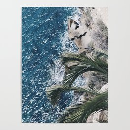 Ocean with Palm Tree Poster