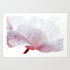 Tulip Exploration Art Print