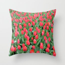 The field of red tulips Throw Pillow