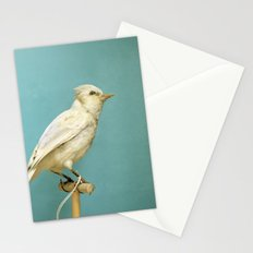 Albino Blue Jay - Square Format Natural History Bird Portrait Stationery Cards