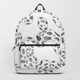 Free Fall Backpack