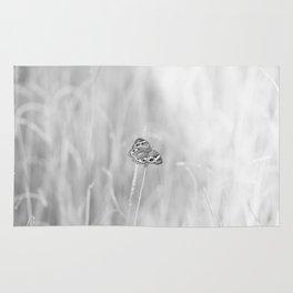 Junonia coenia, Common Buckeye Butterfly Black and White Rug