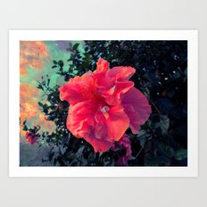 Bloom into a Galaxy Art Print