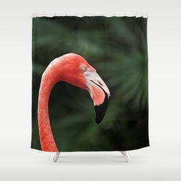 Flamingo #4 Shower Curtain