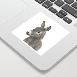 Baby Donkey Sticker