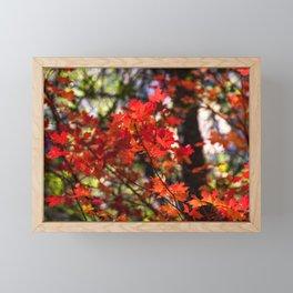 Red Fall Foliage Framed Mini Art Print