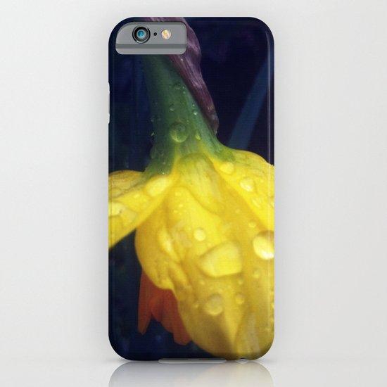Drops on Daffodil  iPhone & iPod Case