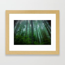 Misty Mountain Forest Framed Art Print