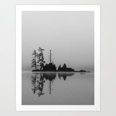 trees in the fog Art Print