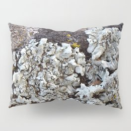 Smattering of Lichens Pillow Sham