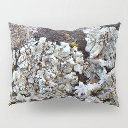Smattering of Lichens Pillow Sham