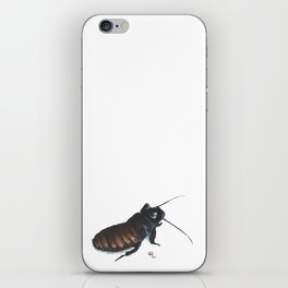 Madagascar Hissing Cockroach iPhone Skin