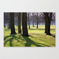 2009 - Park (High Res) Canvas Print