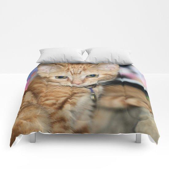Dynamic Duet Comforters
