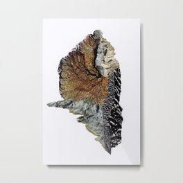 Nature No. 1 Metal Print