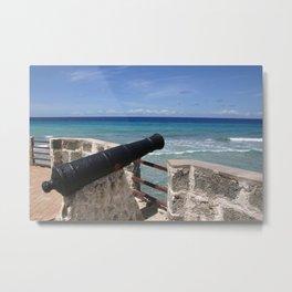 Caribbean defence I Metal Print