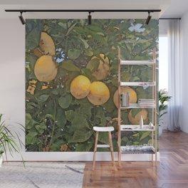 Lemon tree full of lemons Wall Mural