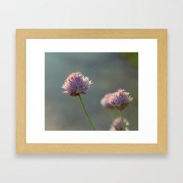 Sunny Chives Framed Art Print