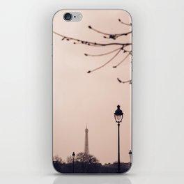 Paris en Rose iPhone Skin