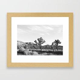 Jtree Framed Art Print