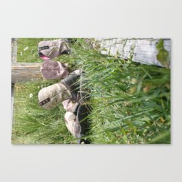Girls and Their Boots Canvas Print