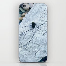 Dead Bee and Skull iPhone Skin
