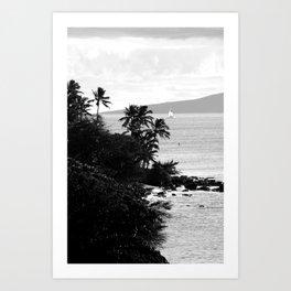 Tropical Darkroom #250 Art Print