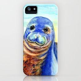 Hawaiian Monk Seal iPhone Case