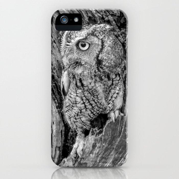 Echo the Screech Owl by Teresa Thompson iPhone Case