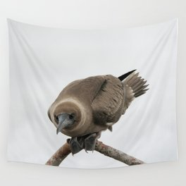 Curious young boobie Wall Tapestry