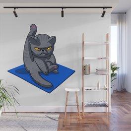 Yoga cat - Angry cat - grey cat - fat cat Wall Mural