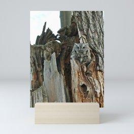 Father screech owl Mini Art Print