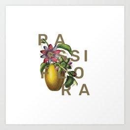 Botanical flower Passiflora Art Print