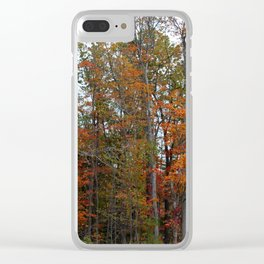 Colorful Cuyahoga Valley Clear iPhone Case