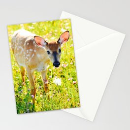 Great Meadows Fawn- Shenandoah National Park Stationery Cards
