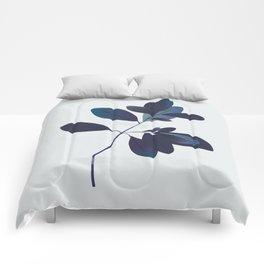 Dried flower Comforters