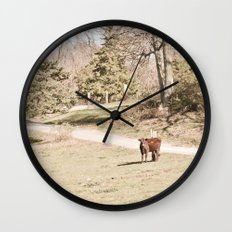 How Now! Wall Clock