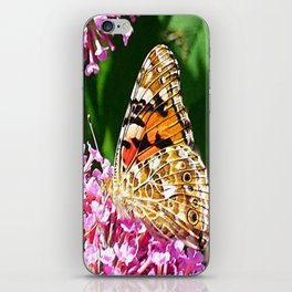 Painted Lady Butterfly 2 iPhone Skin